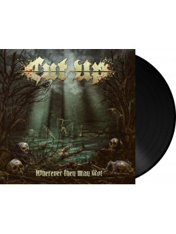 DISPERSE - Foreword * 2xLP *