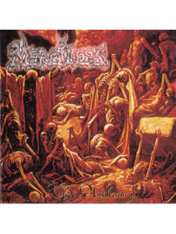 ENTRAILS - World Inferno * LP *